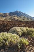 Spain, Canary Islands, Tenerife, Teide National Park, View of the volcano Teide - stock photo