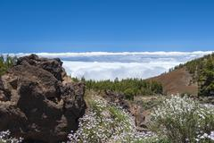 Stock Photo of Spain, Canary Islands, Tenerife, Teide National Park