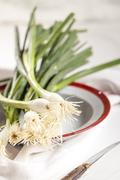 Spring onions on plate - stock photo