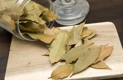 Stock Photo of dried bay leaves