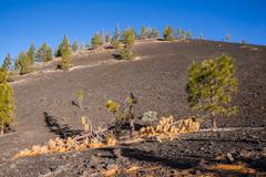 Spain, Canary Islands, Tenerife, Mirador de Chio, Teide National Park, Canary Stock Photos