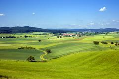 Stock Photo of idyllic scenery with farming and a country lane, hesse, germany, europe