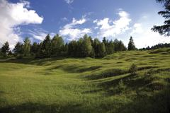 buckelwiese, literally hummocky meadow, werdenfelser land, upper bavaria, bav - stock photo