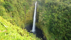 Time Lapse of Akaka Falls in Hawaii -Tilt Up- Stock Footage
