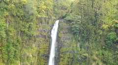 Stock Video Footage of Time Lapse of Akaka Falls in Hawaii -Close Up Tilt Down-