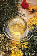 Glass teacup and saucer with healing herbs, spices, medicinal plants Stock Photos