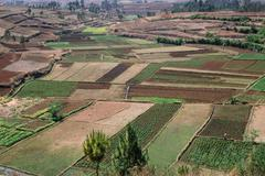 agrarian country with rice fields, highlands of madagascar - stock photo