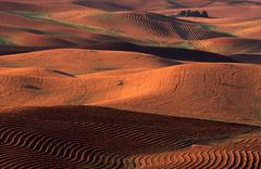 Agrarian country, palouse country, washington, usa Stock Photos