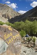 River oasis at jing chan valley, ladakh, jammu and kashmir, india Stock Photos