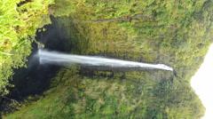 4K Time Lapse of Akaka Falls in Hawaii -Vertical Shot- Stock Footage