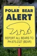 Sign polar bear alert Stock Photos