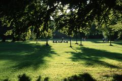People in park, english garden, muenich, bavaria, germany / englischer garten Kuvituskuvat