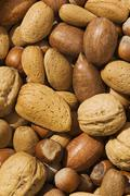 mixed nuts with walnuts, hazelnuts, almonds and pecan nuts - stock photo