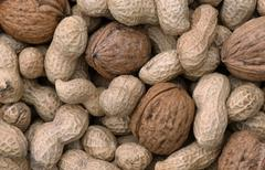 peanuts and walnut fruits (arachis hypogaea), (juglans regia) - stock photo