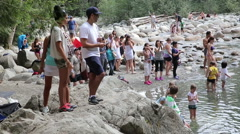 Tourists at the Lynn Canyon park in Vancouver Stock Footage
