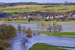 Flood in spring with awashed grassland and meadows, lahn valley, hessen, germ Kuvituskuvat
