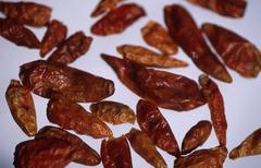 Dried hot chilis (capsicum annuum) piri-piri Stock Photos