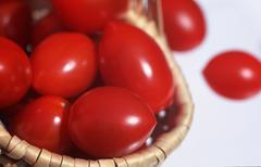 Tomato fruits (Solanum lycopersicum) Kuvituskuvat