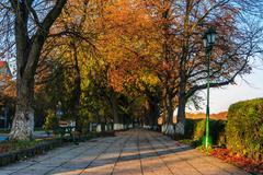 bench at yellow autumn alley - stock photo