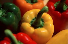 Pepper (Capsicum annuum) - stock photo