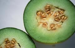Netted melon (cucumis melo var. reticulatus) Stock Photos