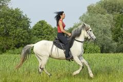 young lady riding on a paso fino horse in gallop - stock photo