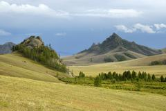 wide open landscape with grassland forest and a dominant mountain terelj nati - stock photo