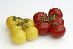 Red and yellow tomatoes / (solanum lycopersicum) Kuvituskuvat