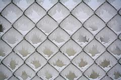 graphic motif, thick layer of frost covering a chain-link fence, westerwald r - stock photo
