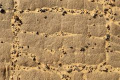 Rock texture, sahara desert, algeria, north africa Stock Photos