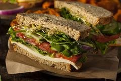 healthy vegetarian veggie sandwich - stock photo