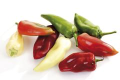 hungarian chili peppers, various colours - stock photo