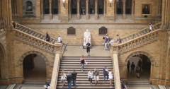 The main stair case in Natural History museum 4K - stock footage