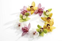 multicoloured orchid blossoms (orchidaceae) formed into a circle - stock photo