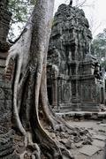 Ta trohm temple, bayon temple, angkor thom, cambodia, southeast asia Stock Photos