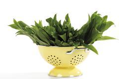 Stock Photo of ramsons or wild garlic (allium ursinum) in a strainer