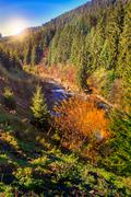 River flows by rocky shore near the autumn mountain forest Stock Photos