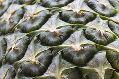 Texture, pineapple (ananas comosus) shell Stock Photos