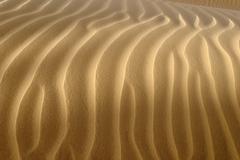 sand dune, tin akachaker, tassili du hoggar, wilaya tamanrasset, algeria, sah - stock photo