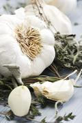 Stock Photo of garlic and herbs