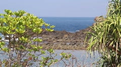Peaceful tropical coast line Stock Footage