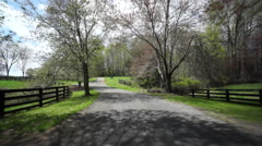 drive down country road with dogwoods - stock footage