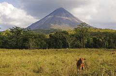 Stock Photo of arenal volcano, costa rica, central america