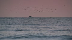 Fishing boat in the early morning sea gulls hovering above the boat Stock Footage