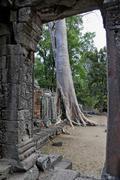 jungle overgrowing banteay kdei temple, angkor, cambodia, southeast asia - stock photo
