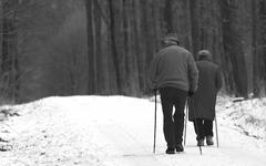Grandpa and grandpa walking in a winter forest Stock Photos