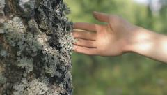 Hand touching a tree trunk in nature, loving nature, environmentalist, static Stock Footage