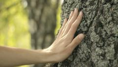 Hand touching a tree in nature, caring nature, environmental ideas, static - stock footage