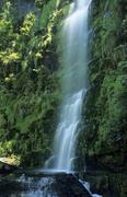 Erskine falls at lorne state park, great ocean road, victoria, aus Stock Photos