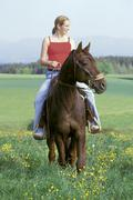 Young lady ridin western-style on a trotter horse Stock Photos
